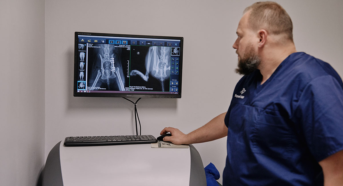 Diagnostyka obrazowa Diagnostyka obrazowa - Royal Vet - weterynarz Zamość